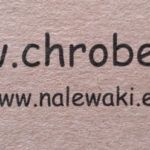 cropped chrobek logo mini